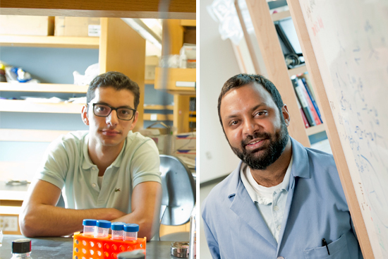 Boston University BU, Innovation Career Development Professorships, College of Engineering ENG, Ramesh Jasti, Ahmad Mo Khalil, Office of Technology Development