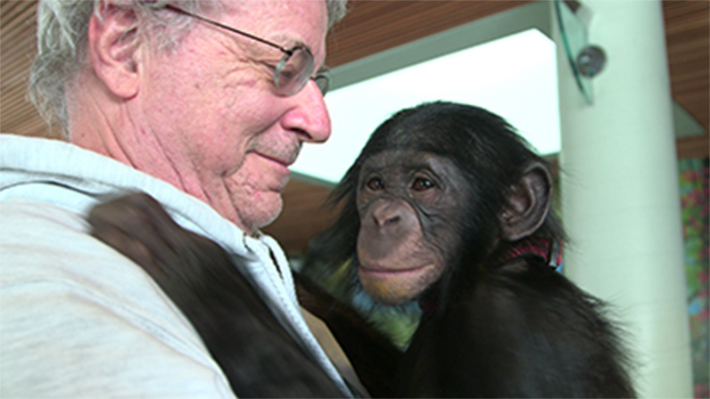 Steven Wise, who regularly visits the world's foremost primatologists, with a friend at the Iowa Primate Learning Sanctuary.