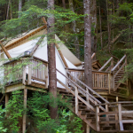 Glamping in yurts, treehouses, and elevated, natural areas, has become much popular.