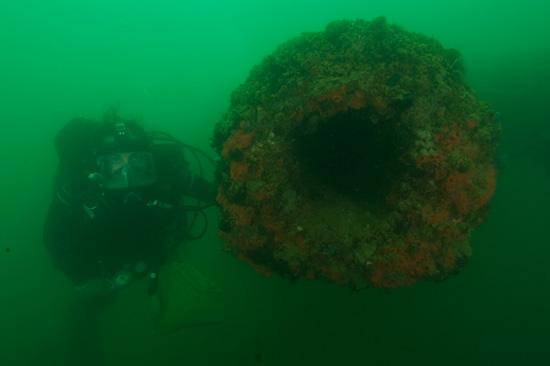 Pearl Harbor Underwater : Beneath the surface bostonia fall
