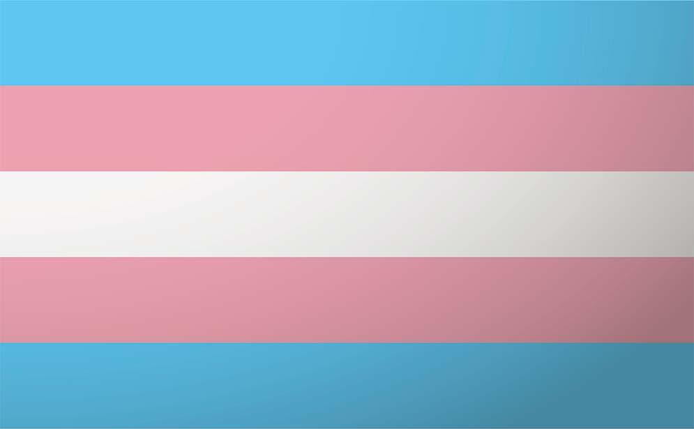 Transgender At Bu Bostonia Bu Alumni Magazine