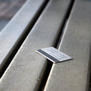 Terrier card on a bench