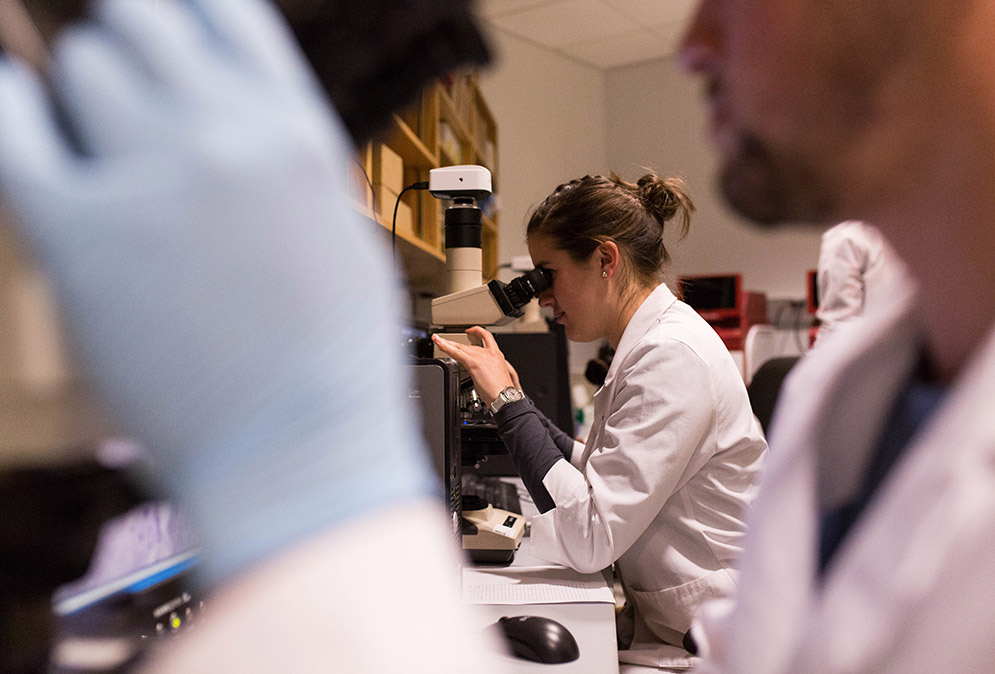 students work in a research lab at boston university