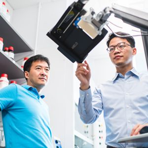 BU biomedical engineers Ji-Xin Cheng (left) and Lu Lan (right) monitor a tablet that displays AcouStar guidance to surgeons.