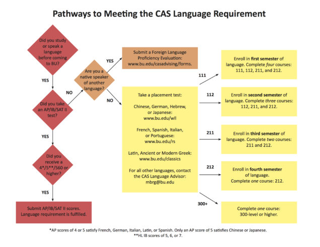 CAS Language Requirement | Arts & Sciences