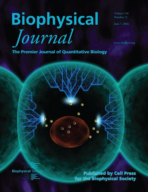 Cover of june 6th issue of biophysical journal