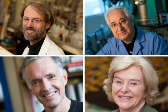 Boston University BU, professors, Mark Grinstaff, Theodore Moustakas, Barbara Gilchrest, James Collins, William Fairfield Warren Distinguished Professor, biomedical engineer, chemistry, National Academy of Inventors