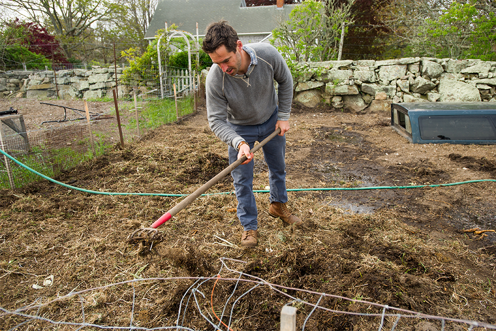 Chef Chris Fischer tilling seaweed in the pig pen at Beetlebung Farm