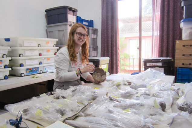 Student researcher Elizabeth Hannigan working with archaeological artifacts found in the Maya city of Xultún