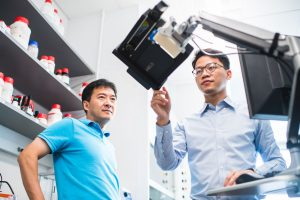 BU biomedical engineers Ji-Xin Cheng (left) and Lu Lan (right) monitor a tablet that displays AcouStar breast cancer tumor lumpectomy guidance to surgeons.