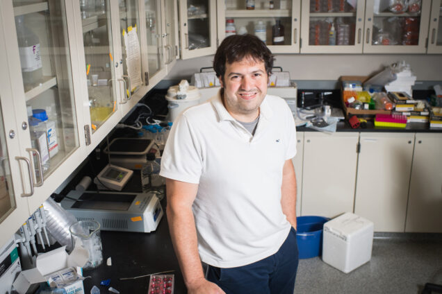 Michael Albro, an assistant professor at the College of Engineering, is working to develop innovative growth factor delivery strategies to overcome several of the major challenges in cartilage tissue engineering. Photo by Jackie Ricciardi