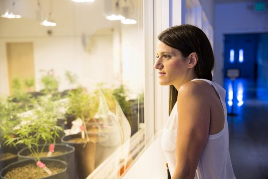 Mattio looks at plants at a Dispensary in Seattle