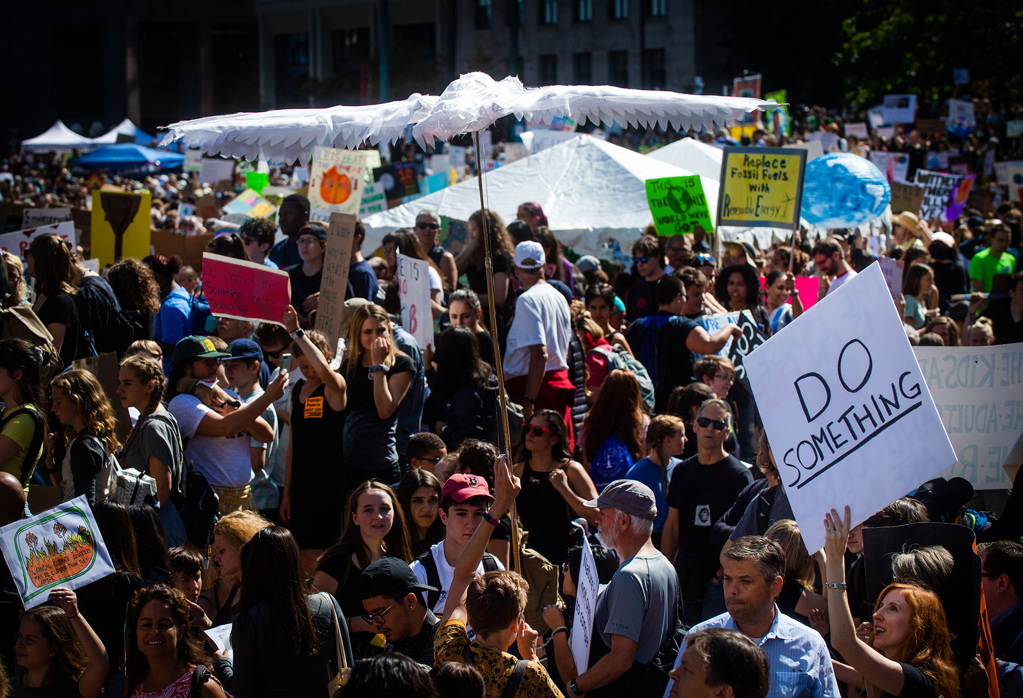 A large crowd of people hold signs and protest during the Youth Climate Strike on City Hall Plaza, Boston.