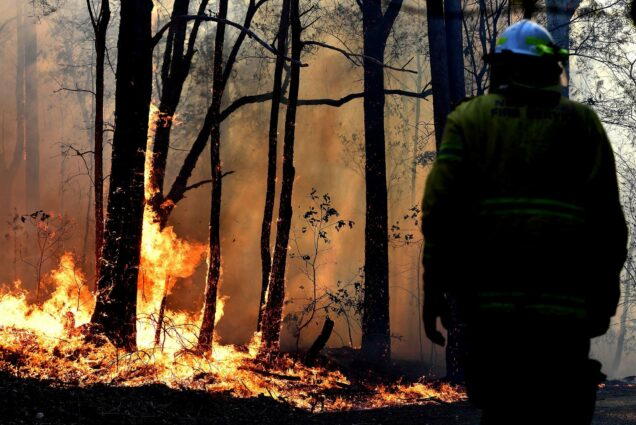 A firefighter watches wildfires burn a patch of forest in Australia.