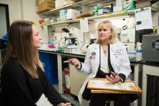 Kat j. McAlpine interviews Ann McKee in her research lab about CTE