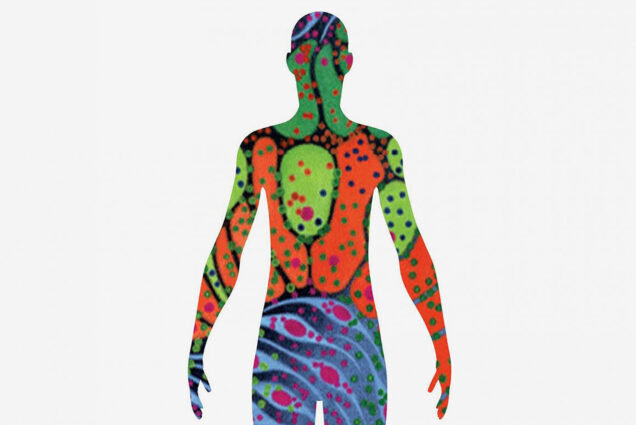 illustration of human body with various different types and colors of cells