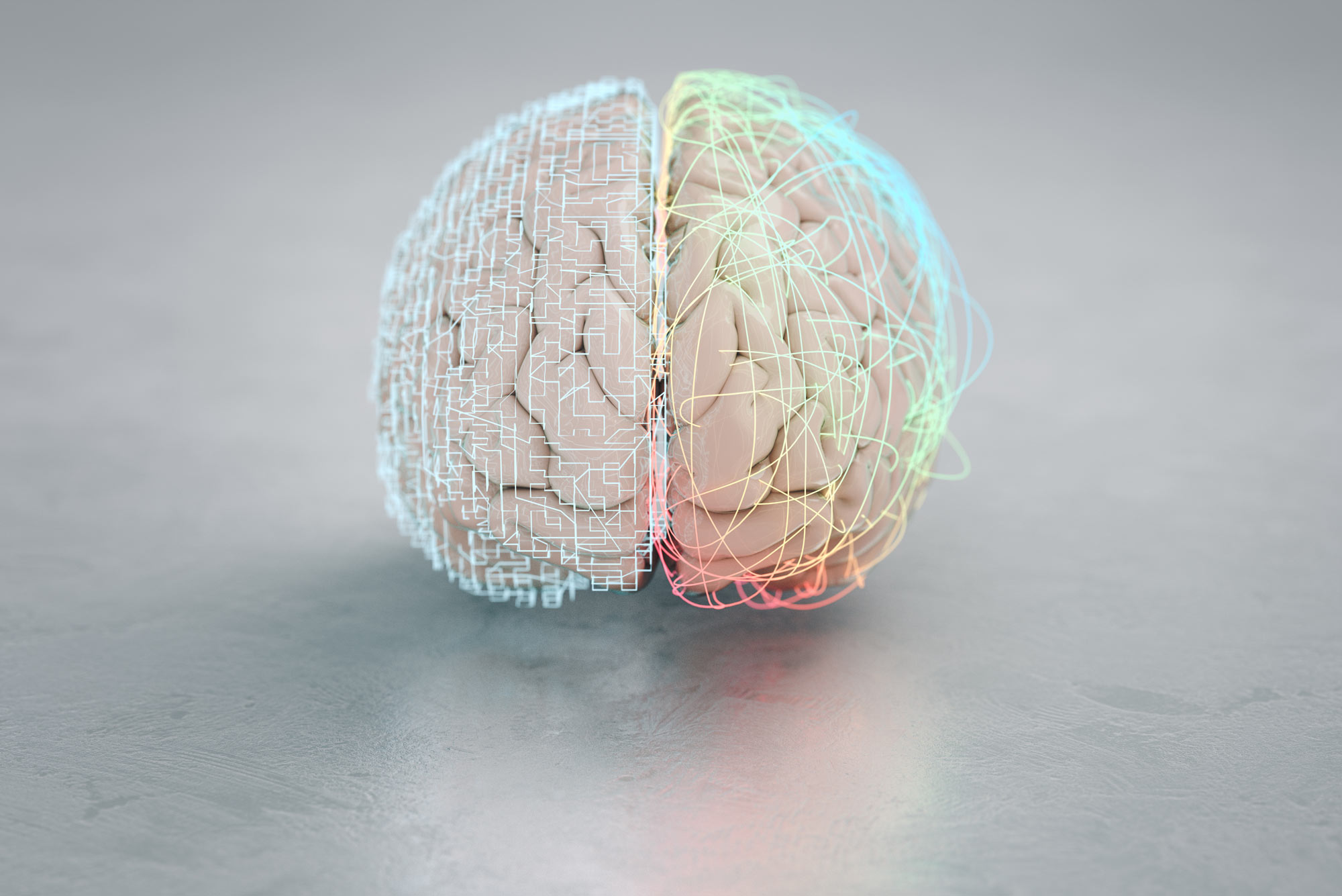 A rendering of a brain