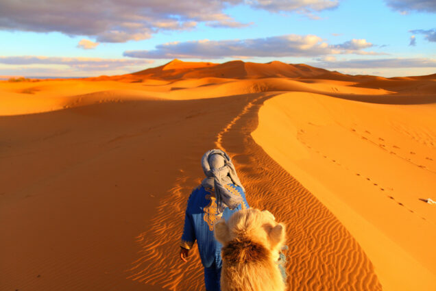 Photo taken by Lu Ping (ENG'24) atop a camel in the Sahara Desert in Morocco. A person dressed in blue white a white head covering is seen leading the camel in the orangey desert sand.