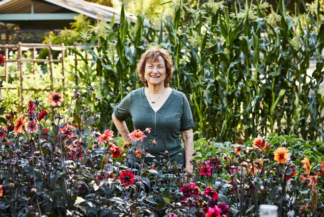 BU alum Renee Shepherd, founder of seed company Renee's Garden, at her test gardens in Felton, California. She stands with a hand on her hip and smiles, with lots of flowers and plants around.