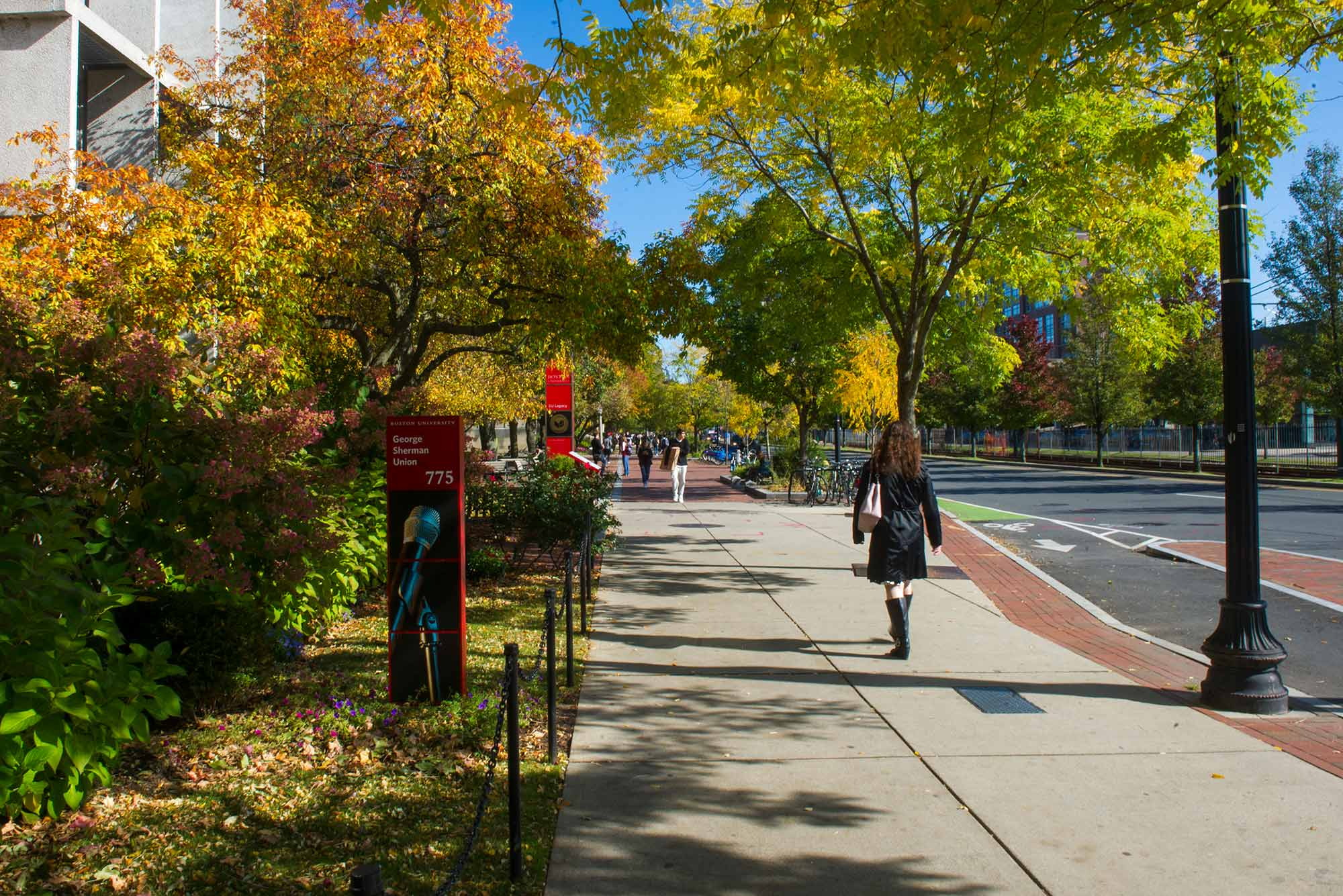 Photo of a student walking down Comm Ave, the trees that line the street have yellow and orange leaves.