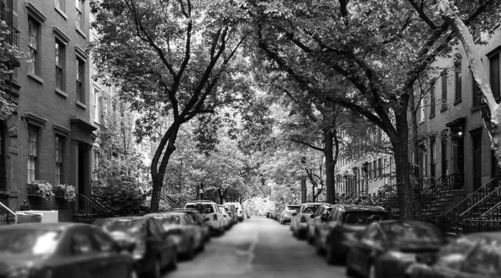 A photo of a street with cars parked and trees overhanging the street