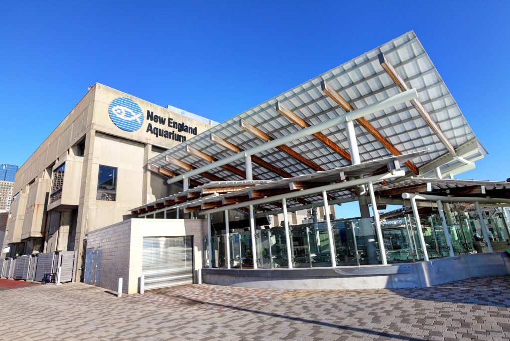 A photo of the facade of the New England Aquarium in Boston