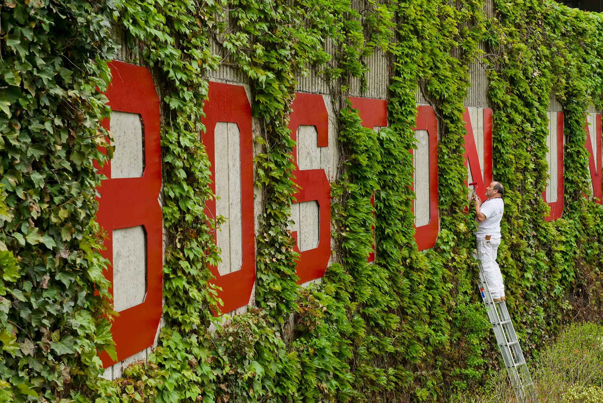 "A photo of someone on a ladder painting the red ""Boston University"" letters that overlook Nickerson Field"