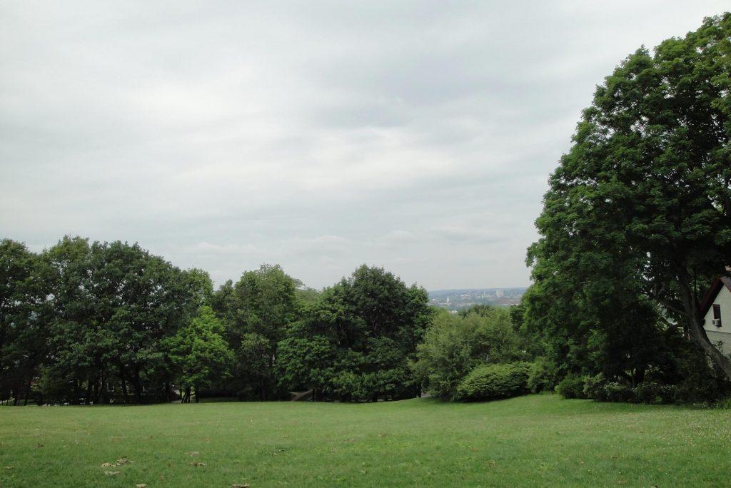 La foto è stata scattata a Cory Hill Park Brooklyn in piena estate, il cielo è grigio e gli alberi paffuti e verdi.