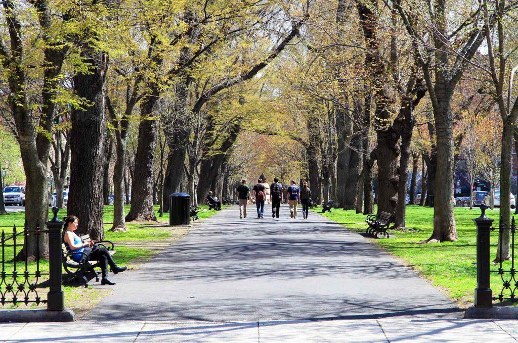 Una foto del Commonwealth Avenue Mall di Boston in primavera, alberi che stanno appena iniziando a germogliare e un gruppo di giovani che cammina lungo la strada.