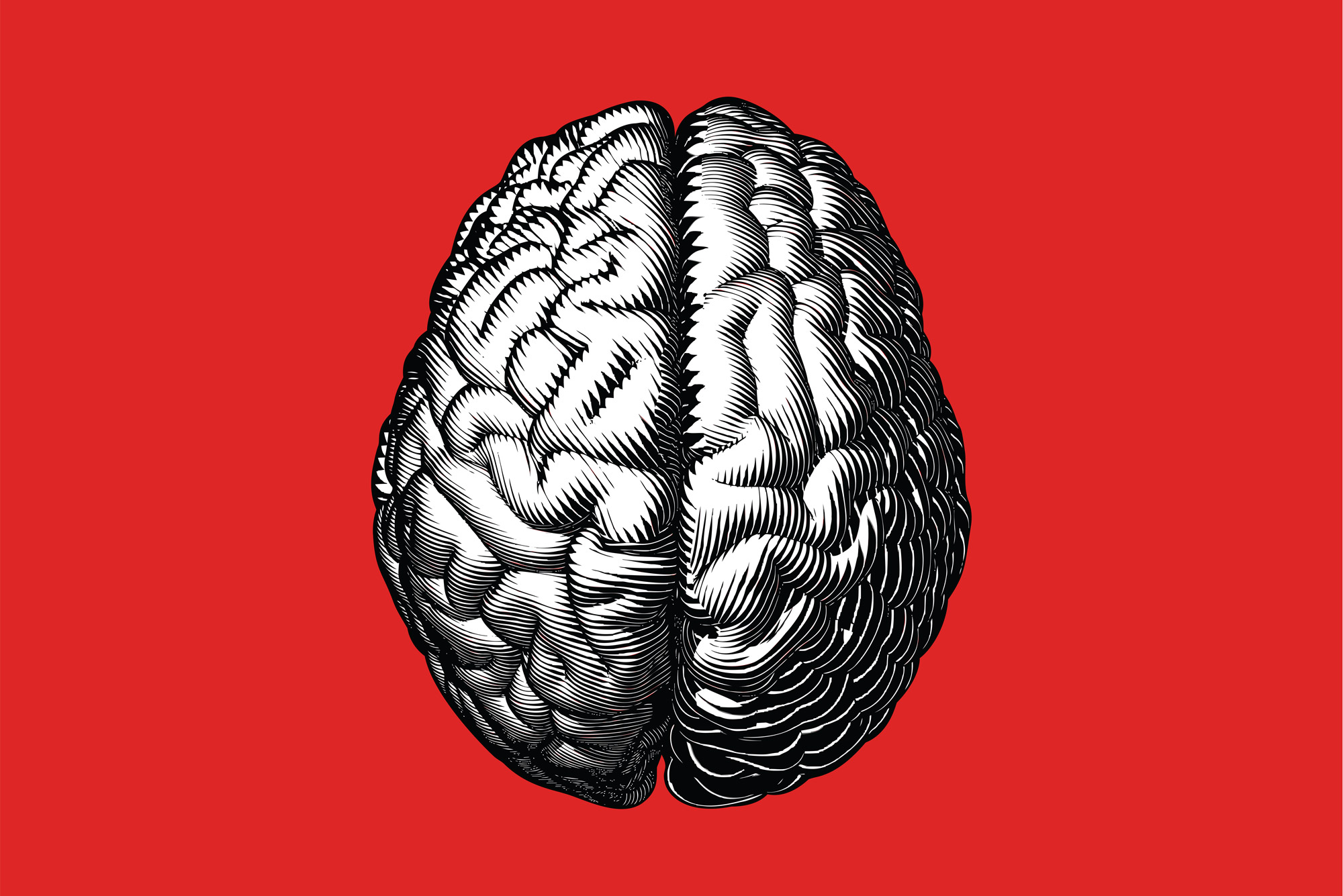 Computer Simulations of the Brain Can Predict Language Recovery in Stroke Survivors