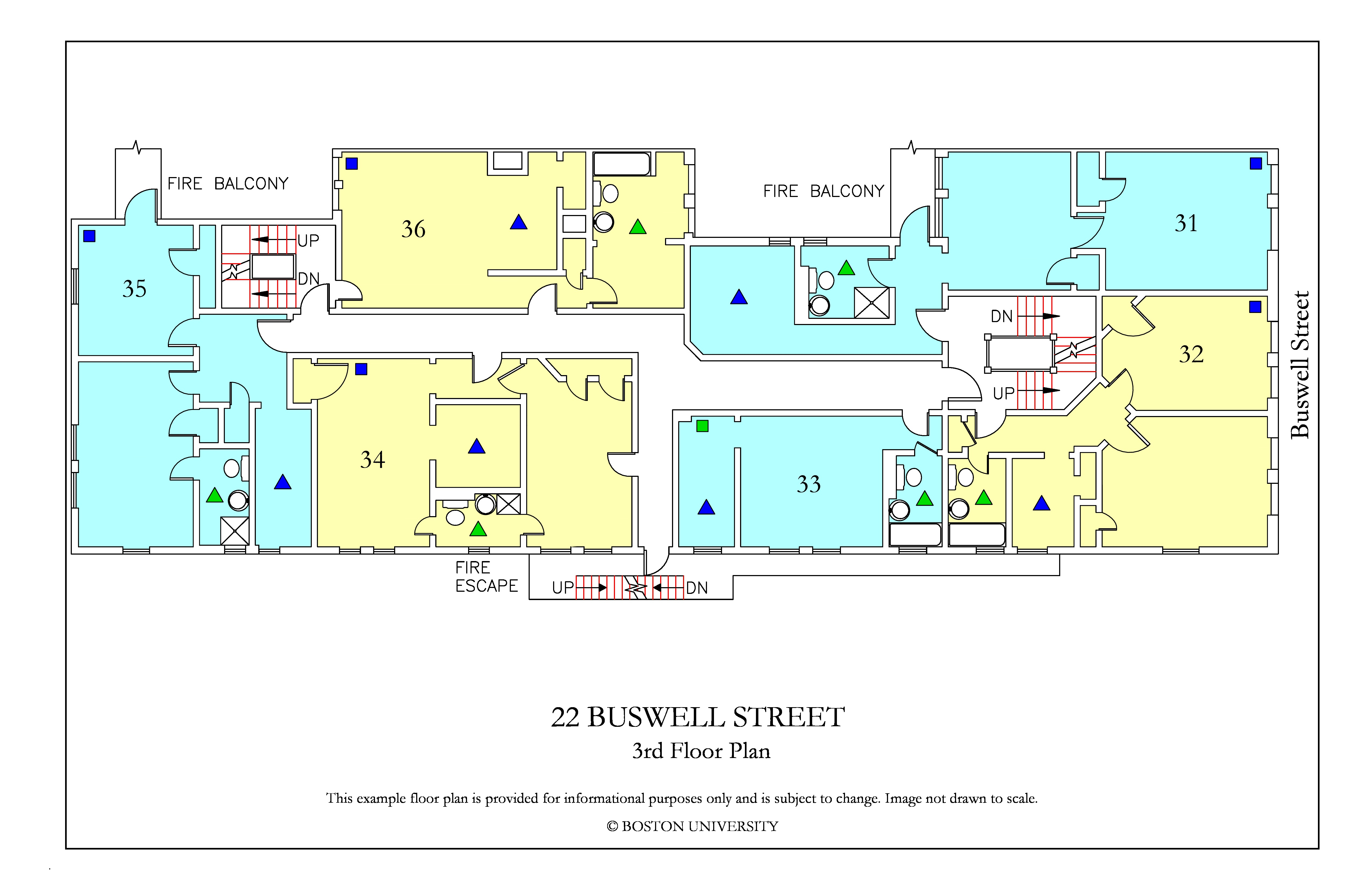 22 Buswell Street » Housing
