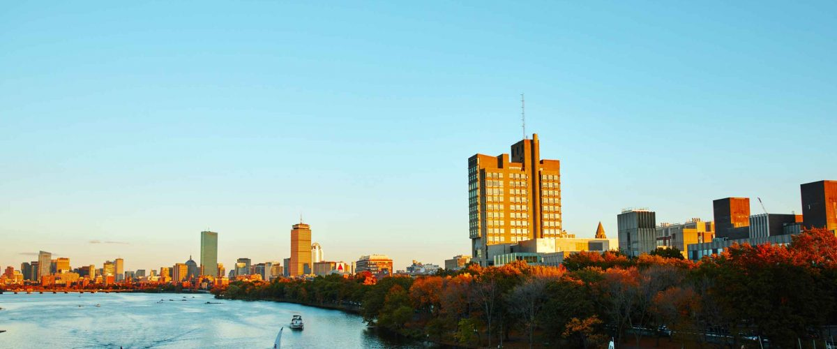 Boston university investment policy realized investment gains calculator