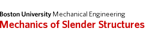Mechanics of Slender Structures