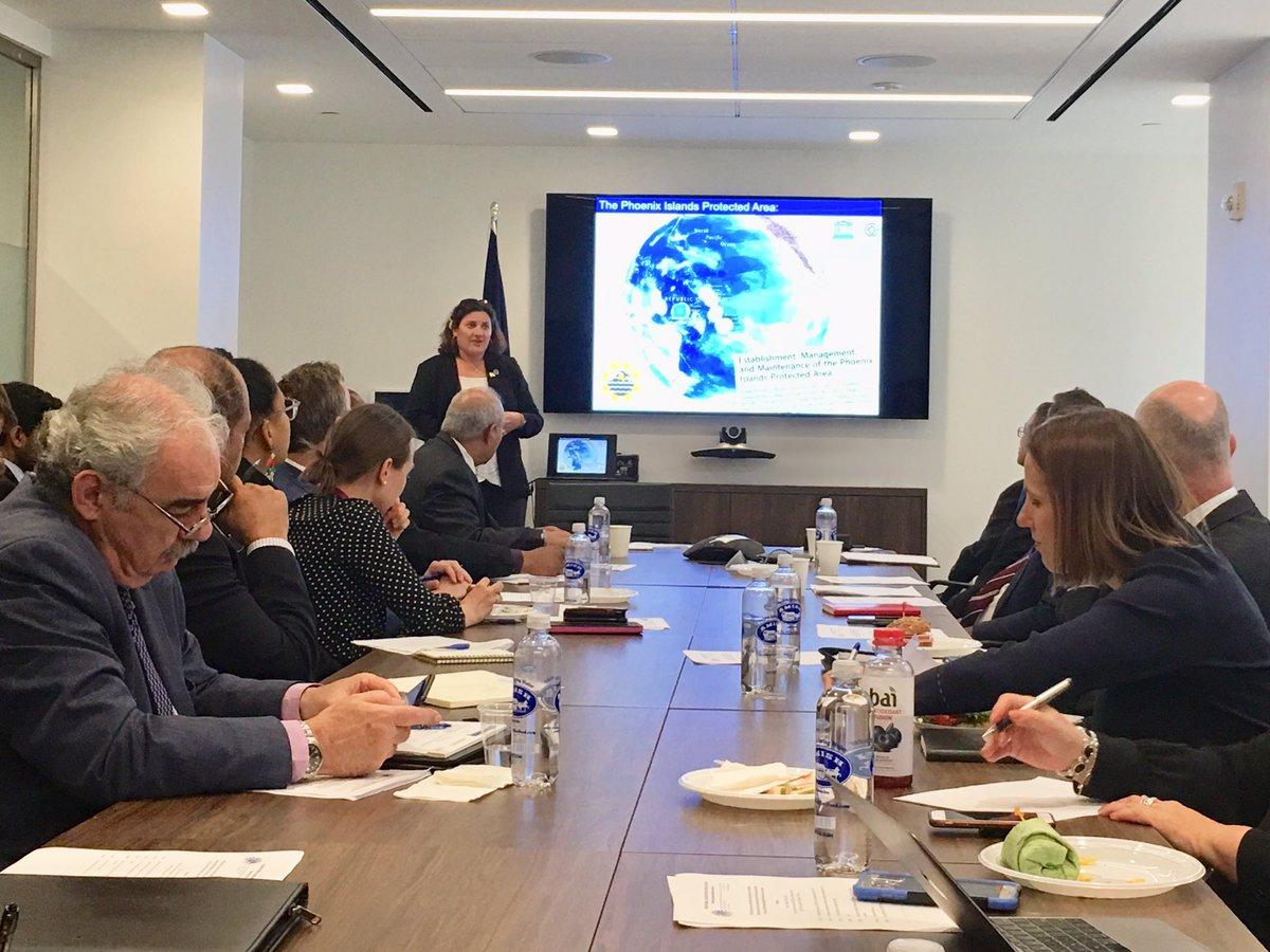 Faculty Associate Randi Rotjan Gives Invited UN Talk On