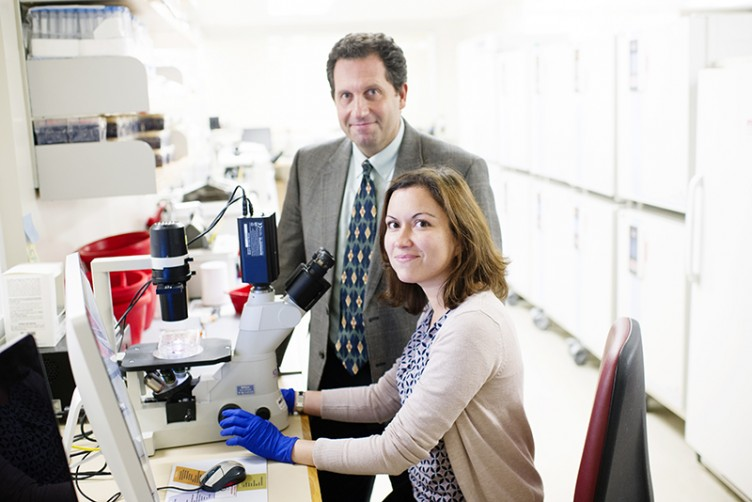 Darrell Kotton and Maria Serra, from BU's Center for Regenerative Medicine (CReM). Working with scientists from Beth Israel Deaconess Medical Center, they grew stem cells into functioning thyroid follicles, then implanted them into mice. The research appeared in Cell Stem Cell.