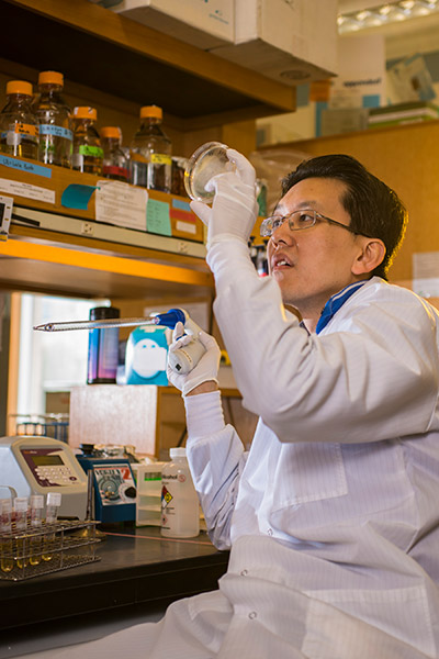"Wilson Wong has found a better way to ""program"" mammalian cells as genetic circuits."