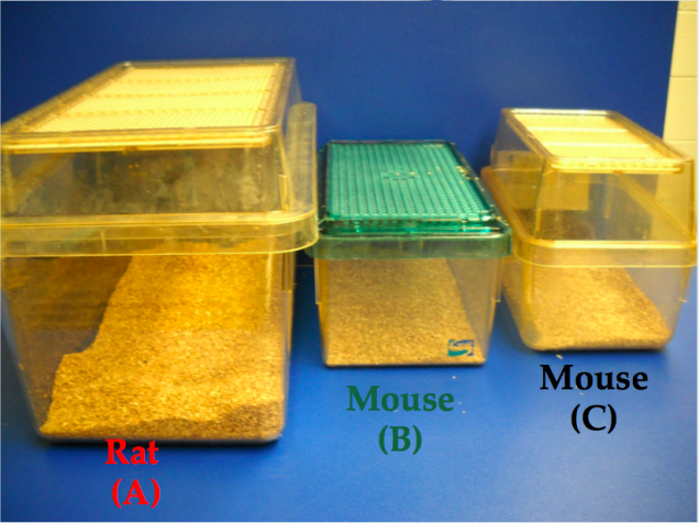 Carbon Dioxide Euthanasia for Rats and Mice (BU ASC