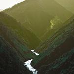 PHF-Upstream-Downstream_150x150
