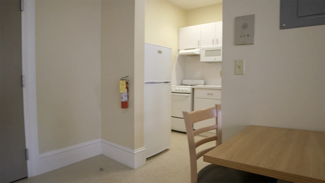 Renovated Air Conditioned South Campus Apartment Kitchen